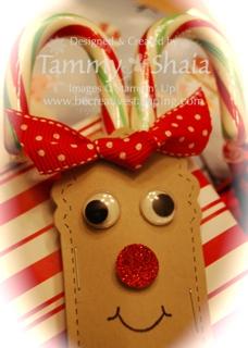 Rudolph Tag close-up