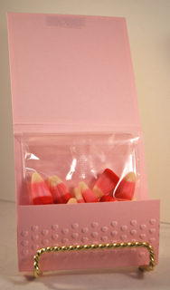 Wild About You Treat Pouch