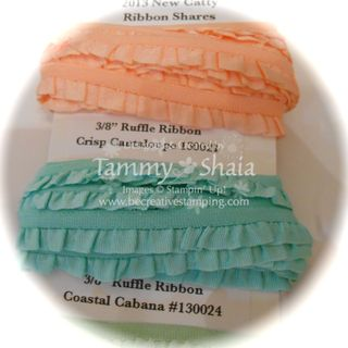 2013 New Catty Ribbon Shares