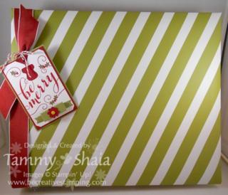Seasonal Stripes 8 x 8 Album