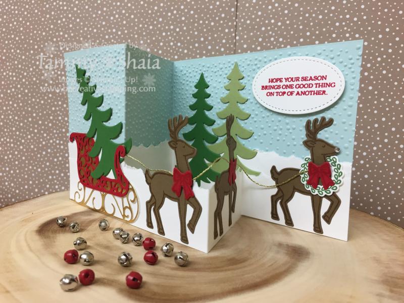 Santa' s Sleigh Z Card 2JPG
