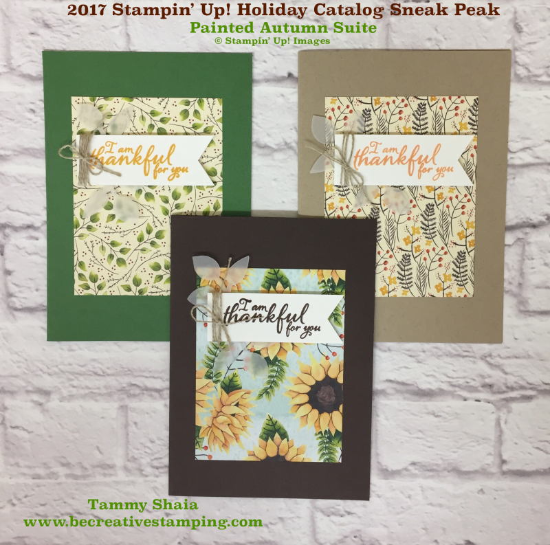 Painted Autumn Suite by Stampin' Up! 2