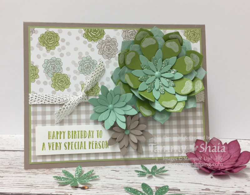 Oh So Succulent Card