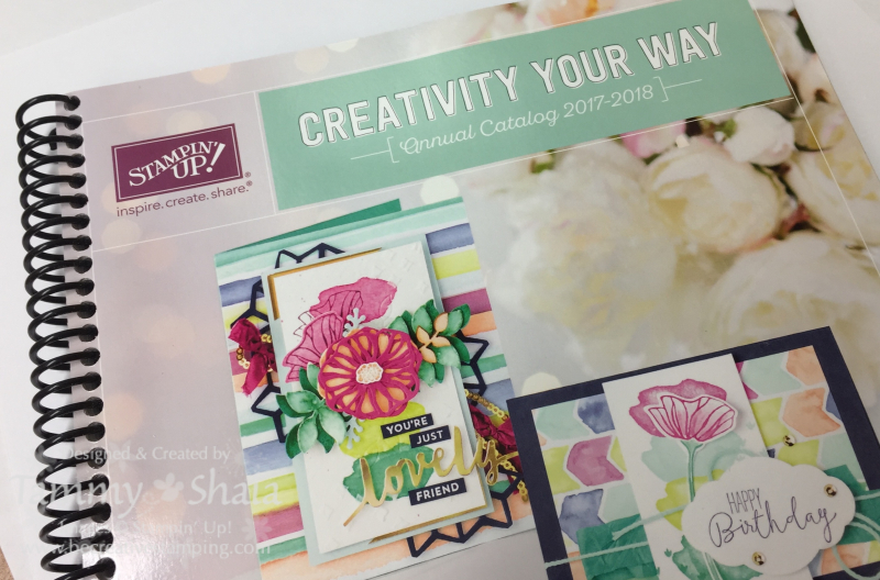 Stampin' Up! 2017 Catalog Image