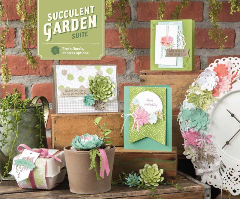 Succulent Garden 1