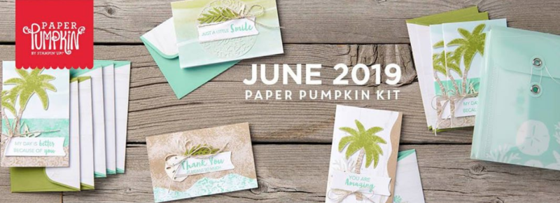 June Paper Pumpkin Kit 2