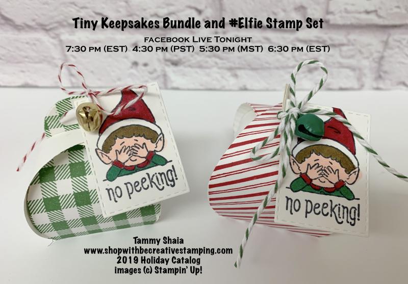 Tiny Keepsake Bundle (FB LIVE TONIGHT)