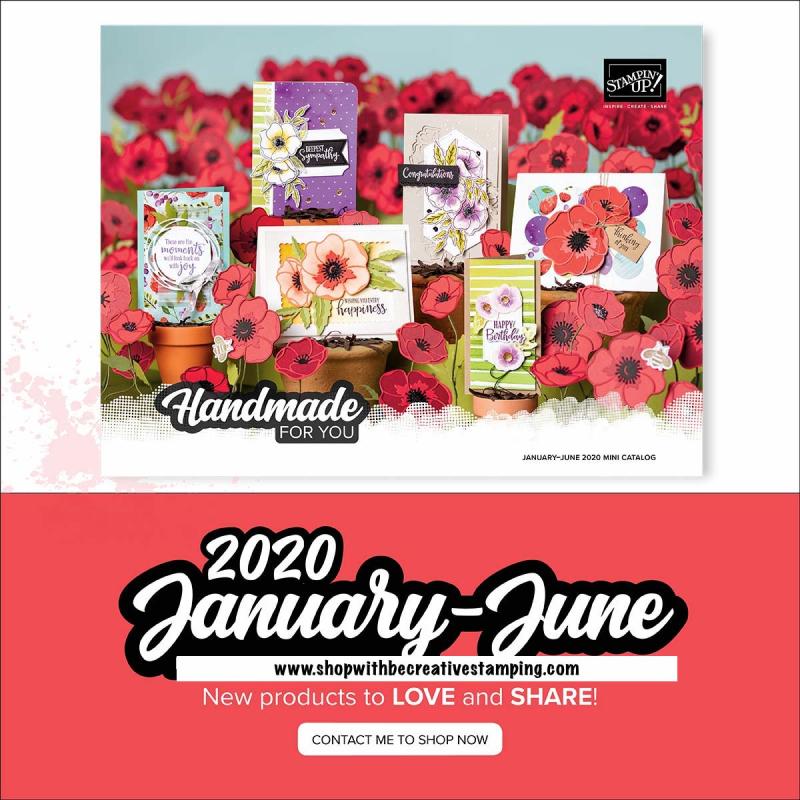 2020 Mini Catalog Image