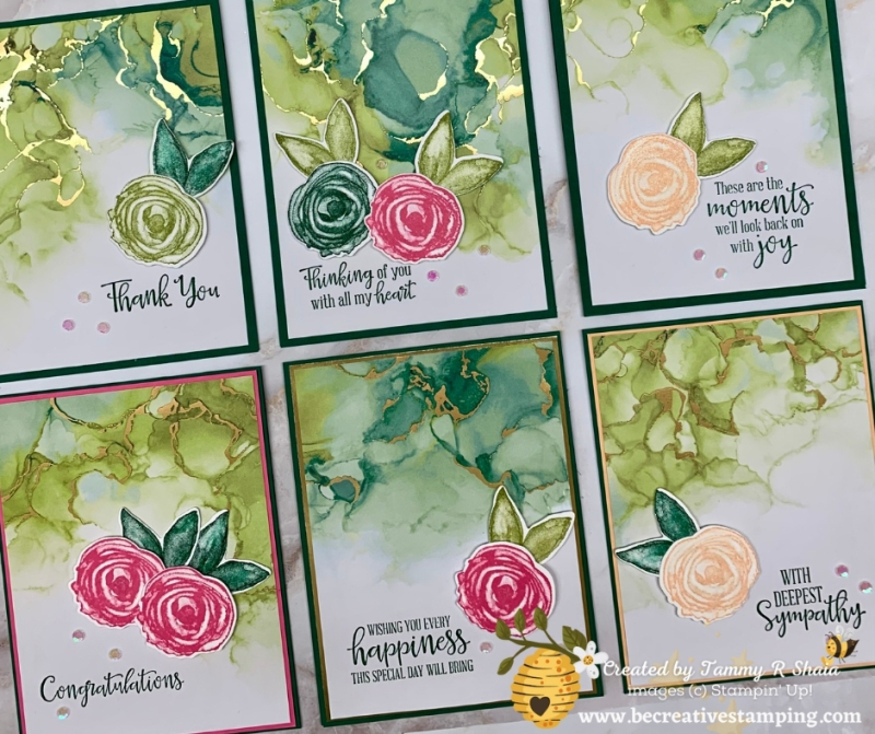 Expressions In Ink DSP Quick Cards (FB2)